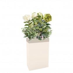 Bac de plantes -...